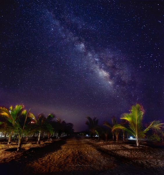 a summer night stroll in an exotic destination, under a canopy of stars... magical  Breathtaking Photographs from Cabo San Lucas