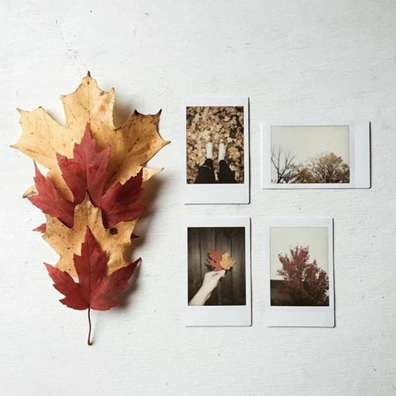 Leaves + Polaroids   #UOONYOU - Urban Outfitters