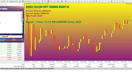 Expert Tips To Build An Expert Forex Plan Forex Trading Trading