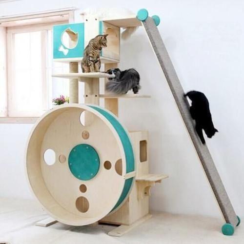 Luxury Cat Tree Condo, Eco Cat Furniture
