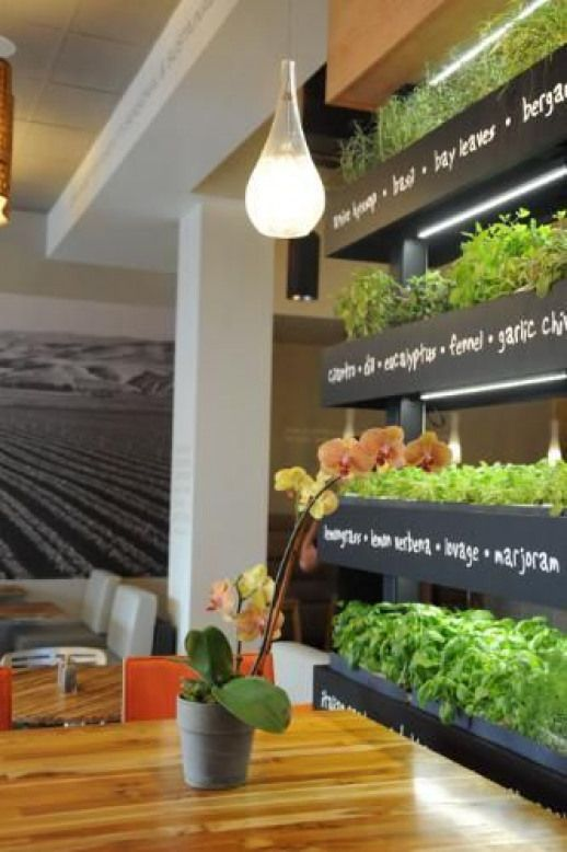 Introducing The Iconic Lyfe Kitchen Herb Wall Prnewsfoto Lyfe