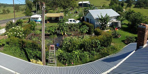 Águas de Pontal: Australianos produzem alimentos para até 50 famíli...