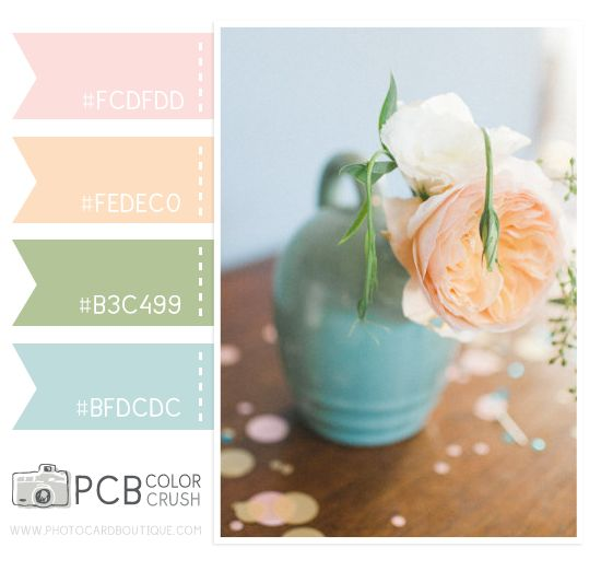 Category : Color Crush Palette | Photographer Templates by Photo Card Boutique - Page 16