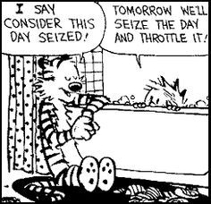 Calvin and Hobbes, consider this day seized!:
