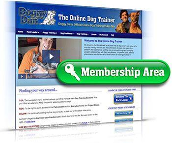 http://dog-trainingadvice.com Excellent online #DogTraining Video Courses! FREE VIDEOS #Puppy #Dog Advice