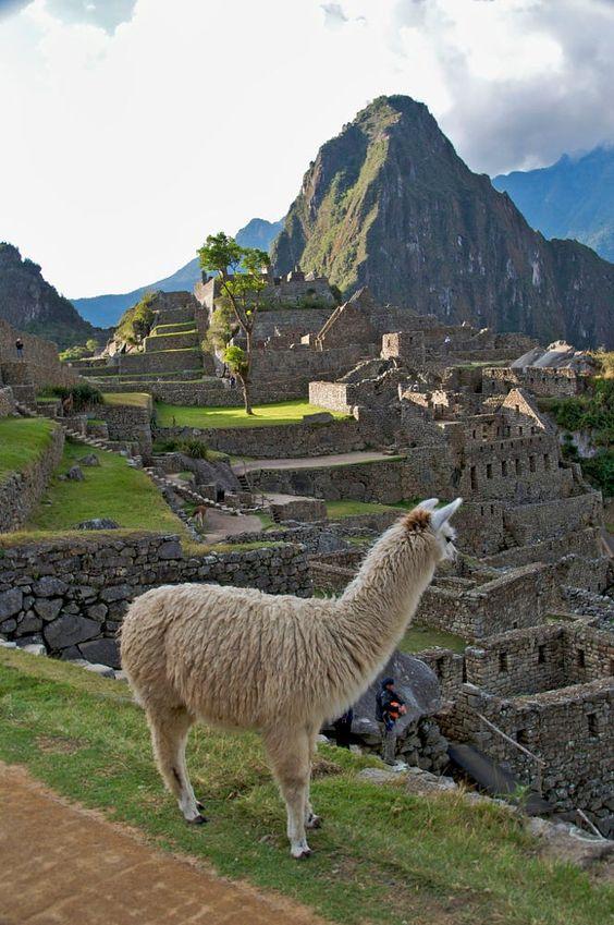 Machu Picchu by Joe Routon on 500px