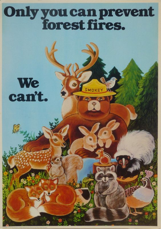 1979 Smokey the Bear Fire Prevention Poster