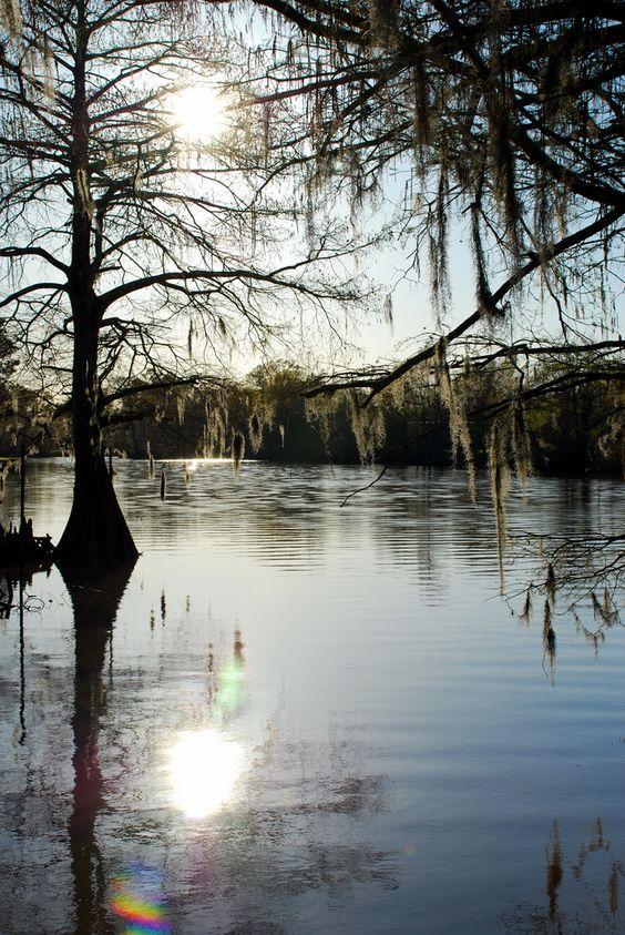 Louisiana Bayou.