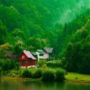 446 Nature Profile Picture Images Wallpapers Pics For Whatsaap House In Nature Cabin Pictures