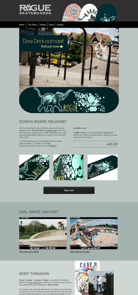 email template - rogue skateboards - Desktop view (mail chimp editable)