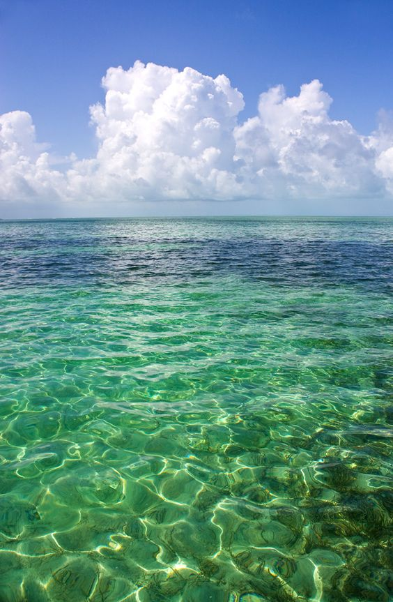 Crystal clear in CocoCay, Bahamas.