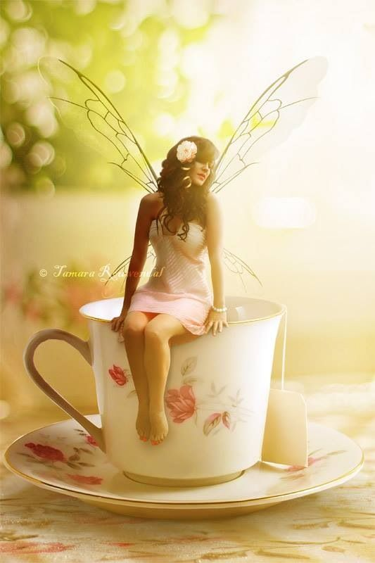 Tea Time Fairy