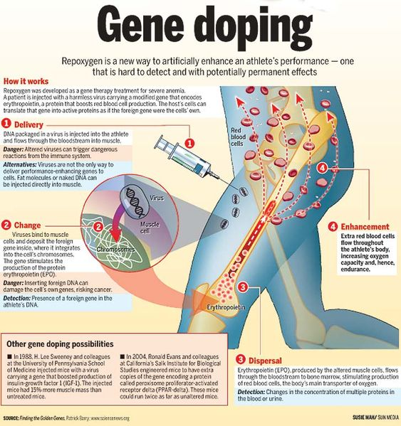 Get gene doped...  ok, maybe when it has more practical applications.