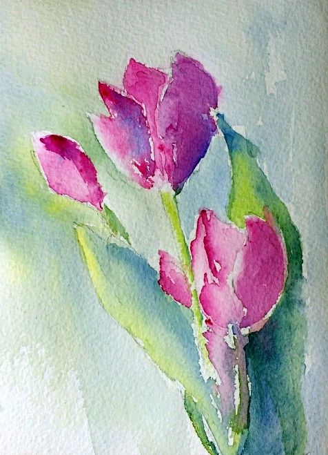 Tulips 30 In 30 Day One Watercolor Paintings Floral Watercolor