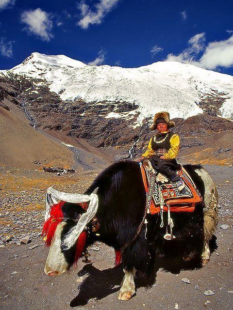 Life in Rural Tibet