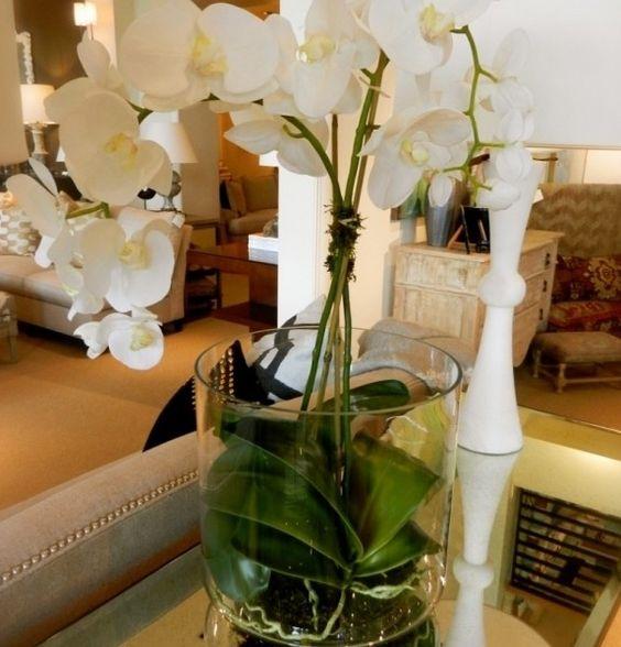 Wei orchidee wohnzimmer dekoration interieur dekoration pinterest deko for Dekoration wohnzimmer weiss