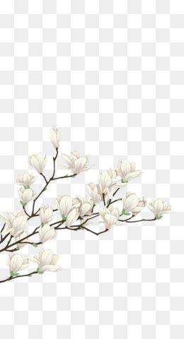 Flowers Png Flowers Transparent Clipart Free Download Watercolour Flowers Wedding Invitation Watercolor Painting H Poster Bunga Bingkai Bunga Bunga Putih