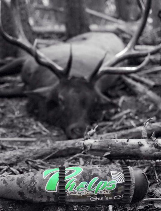 Avoid These Top 10 Elk Hunting Mistakes Part 1 Elk Hunting Elk Hunting Tips Archery Elk Hunting