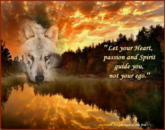 Let your heart, passion and spirit guide you.