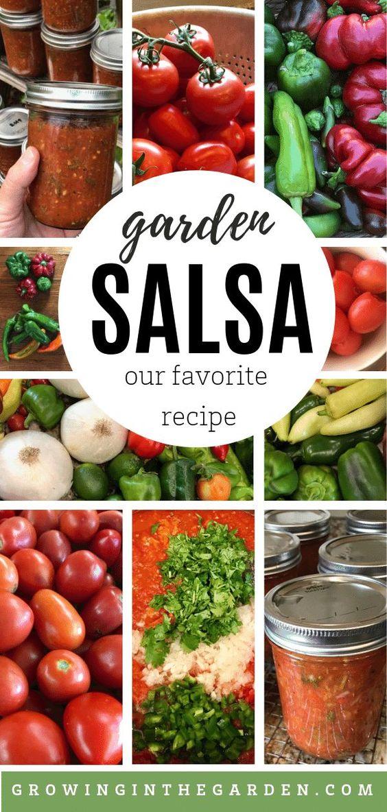 Our Favorite Garden Salsa Recipe | Growing In The Garden