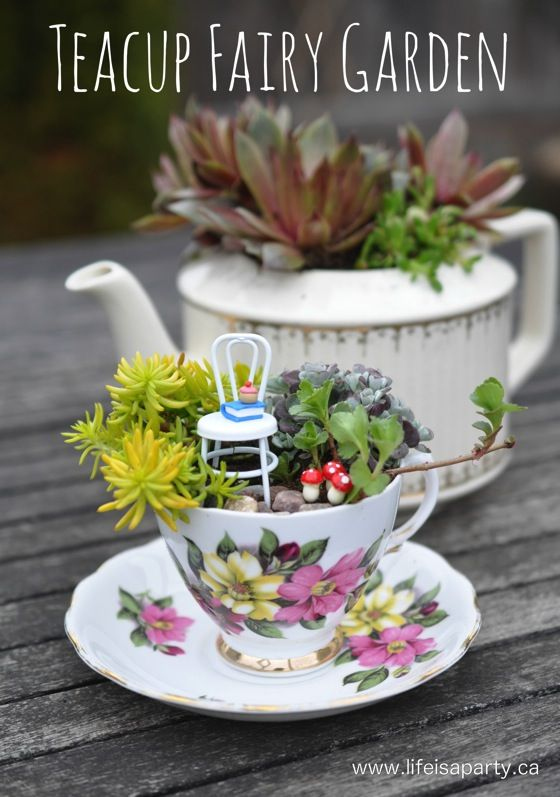 Teacup Fairy Garden -the perfect mini succulent garden along with how to make your own little fairy accessories: