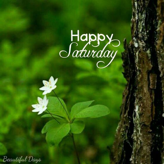 Good morning my beautiful girls. Happy Saturday :)
