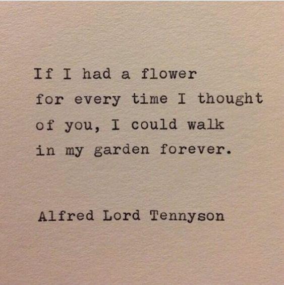 Rennen Tennyson