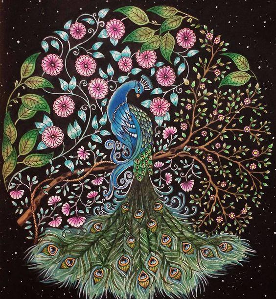 «Pavão incrível! @Regrann from @roofontana -  #jardimsecreto  #jardinsecret #lapisdecor  #arttherapy #terapiadascores #colorindo #livrosinterativos…»
