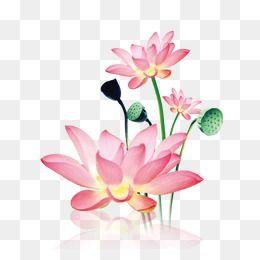 Cherry blossom Bag Tasche, cherry blossom, flower, shopping Bags Trolleys  png | PNGEgg