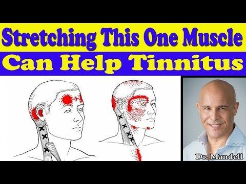 Stretching This One Neck Muscle Can Help Your Tinnitus Dr Alan