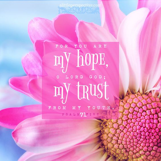 For You are my hope, O Lord God; my trust from my youth. Psalm 71:5 | scripture pictures at alittleperspective.com