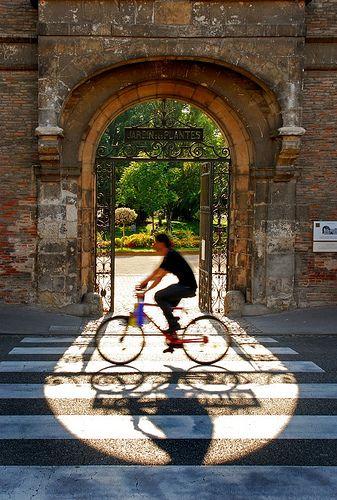 Toulouse gardens toulouse france and toulouse - Toulouse jardin des plantes ...