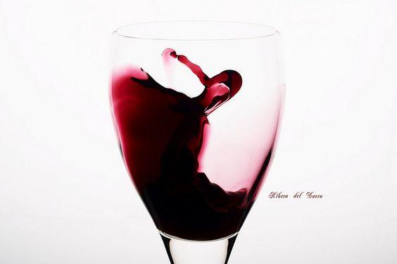 Ruta del Vino Ribera del Duero, sensaciones con denominación de origen
