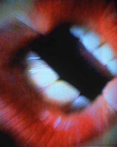 Image result for Mutaflor Pipilotti Rist