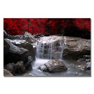 @Overstock.com - Philippe Sainte-Laudy 'Red Vison' Canvas Art - Artist: Philippe Sainte-LaudyTitle: Red VisionProduct Type: Gallery-wrapped canvas art   http://www.overstock.com/Home-Garden/Philippe-Sainte-Laudy-Red-Vison-Canvas-Art/7551554/product.html?CID=214117 $40.17
