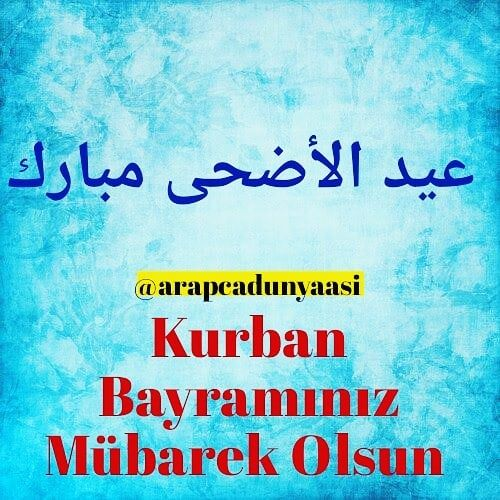 Pin By Lily Cullen On Learn Turkish Learn Turkish Instagram Book Cover