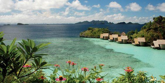 Raja Ampat Eco Dive Resort | Misool Eco Resort