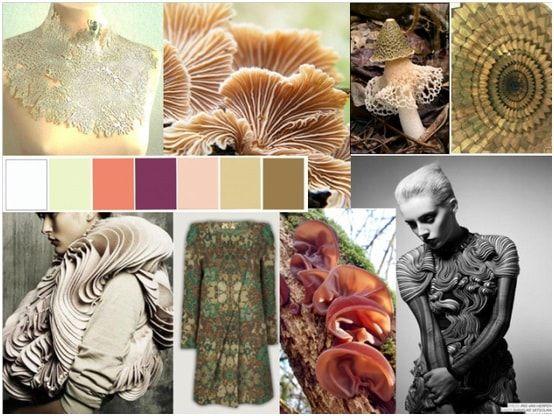 Fungi Fashion Inspiration Mood Board Fashion Magazine Design Magazine Layout Design Mood Board Fashion