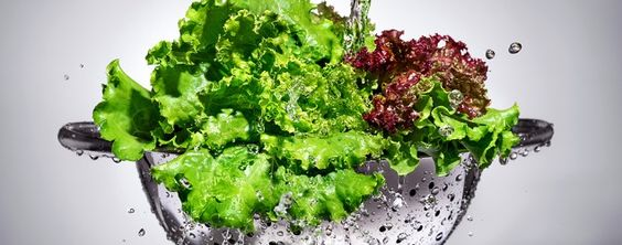 The best way to store lettuce. (kot63/Thinkstock)