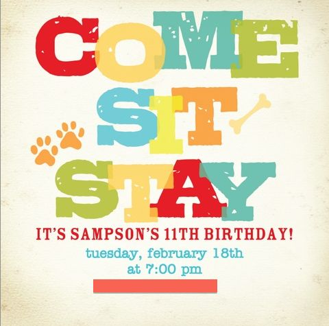 party destination 235492 little dino 1st birthday invitations, Party invitations