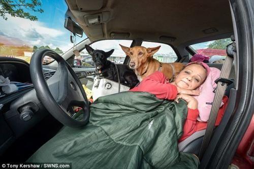 """""""O GRITO DO BICHO"""": Mulher escolhe viver em carro a abandonar seus cac..."""