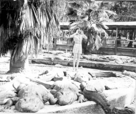 Florida Memory - Woman playacting with alligators.