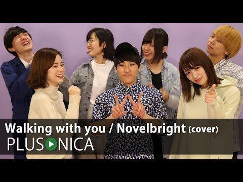 Novelbright walking with you
