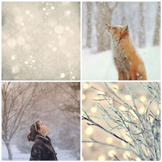 I wanna do a cold, first big snow, photo session. Who's crazy enough with me?? NO? No one? LOL!~