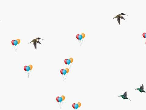 Png Video Flying Balloon Birds Flying Png