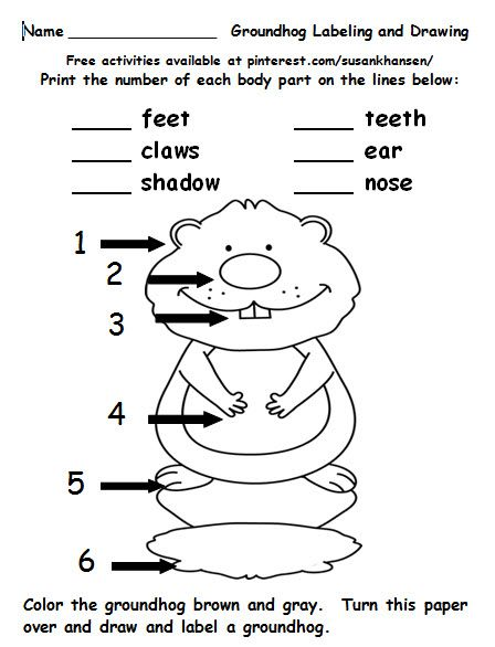 This Free Worksheet Provides Students A Chance To Label And Write About Groundhogs View Other Free Workshee Holiday Activities Free Activities Worksheets Free