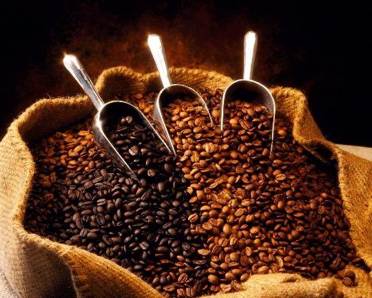 Các loại cà phê ở đây khá phong phú và đa dạng