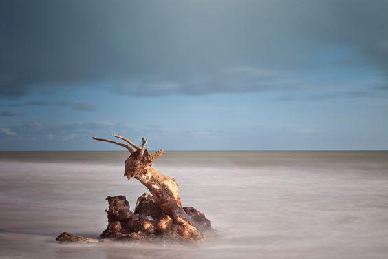 La créature de l'ile de Ré | Flickr - Photo Sharing! https://www.flickr.com/photos/pfunkcity/7131970849/in/pool-projectweather/