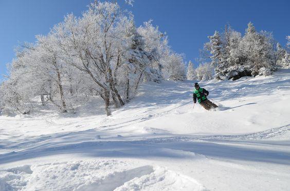Journée de poudreuse #powday #ski