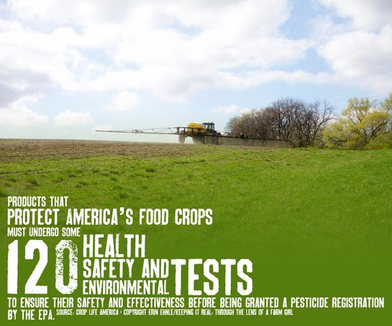 Science and research is a MUST in food production.